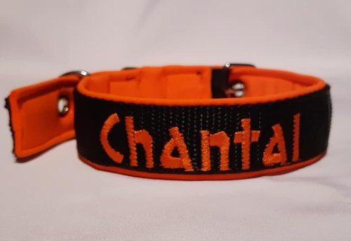 Hundehalsband Schwarz Orange